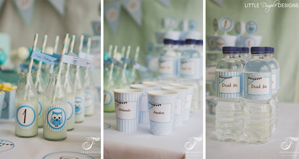 Owl Party Water Labels for a Boy