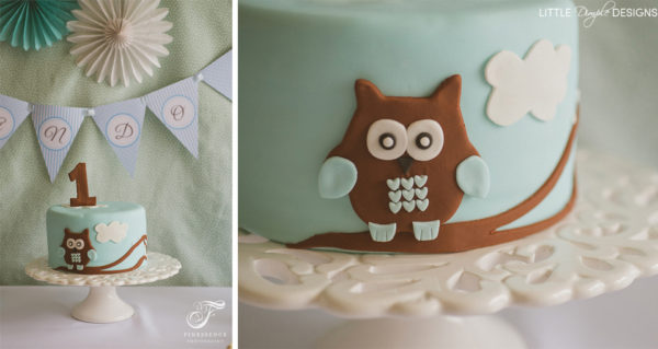 Owl Party Birthday Cake for a Boy