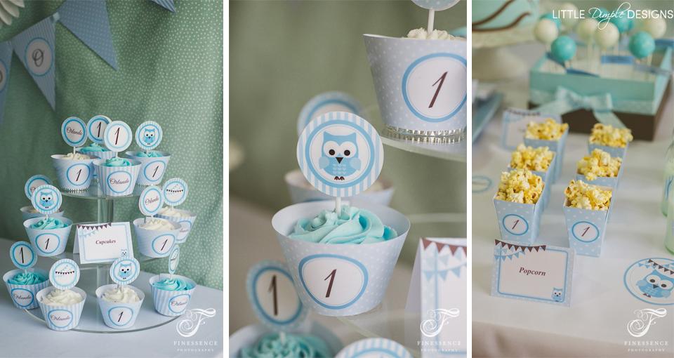 Owl Cupcakes for a Boy