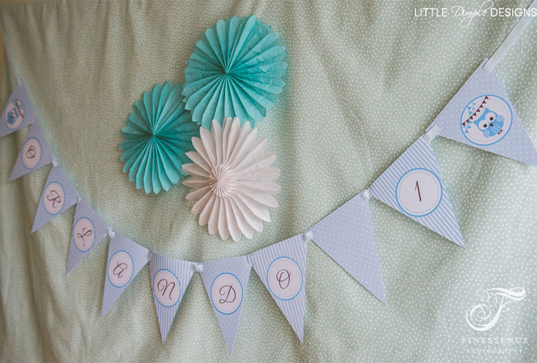 Owl Bunting for a Boy