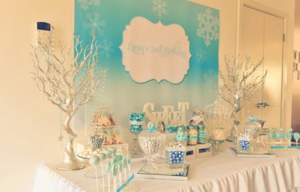 Winter Wonderland - Frozen Inspired Girl's Birthday Party Backdrop